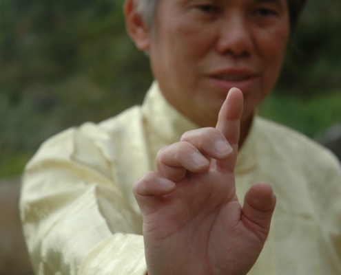Grandmaster Wong One Finger